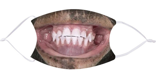 Smiling Monkey Face Mask with Filters