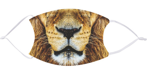 Lion Face Mask with Filters
