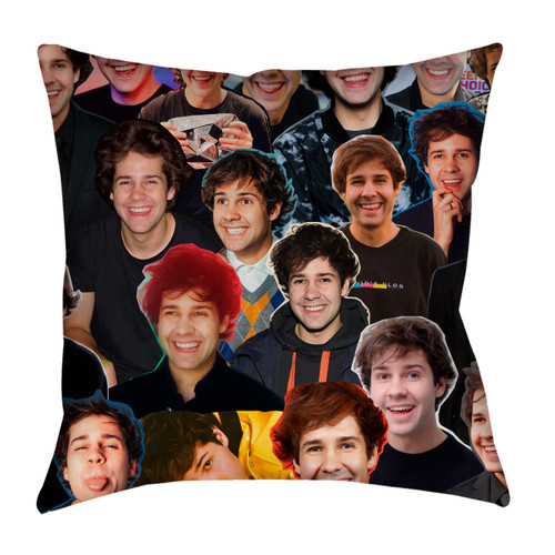 David Dobrik Photo Collage Pillowcase