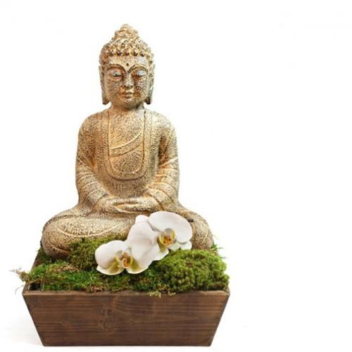 Buddha?s Den