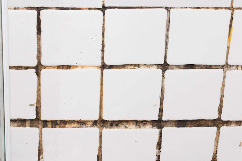 Top 10 Reasons to Use FRP Instead of Tile in a Commercial