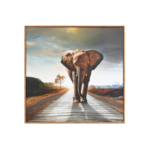 Elephant Framed Canvas Print