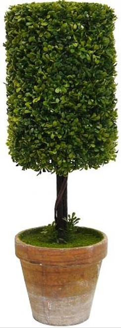 Cylinder Topiary Bush 35cm