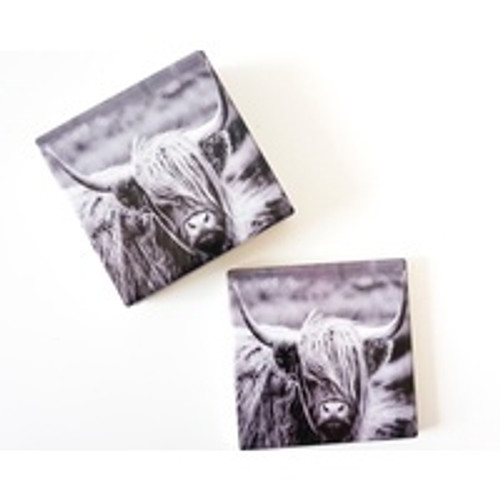 Fringe Friday Bovine Ceramic Coaster Set