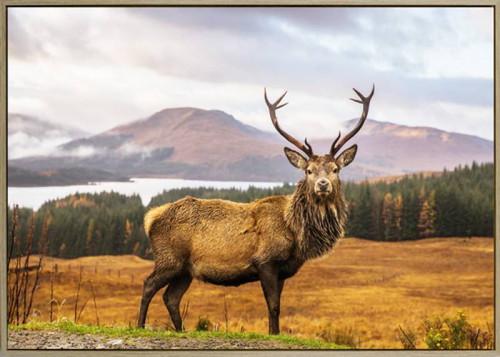 Disco Deer Canvas 100x140cm