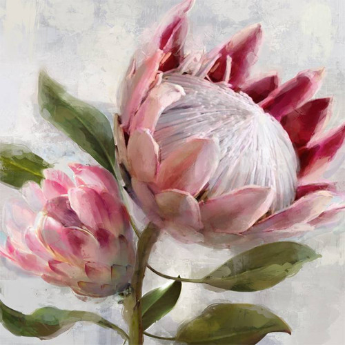 Seline Protea Canvas 80x80cm