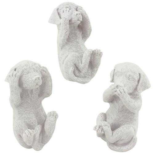 Hear/See/Speak Labrador White S/3