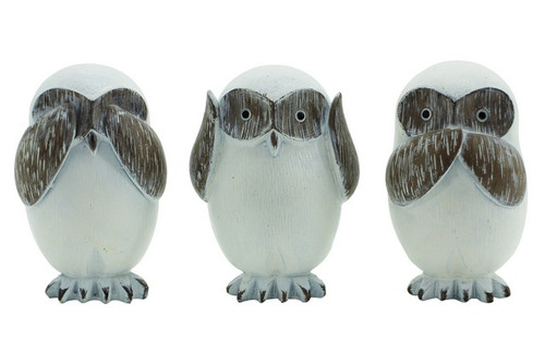 Hear/See/Speak Natural Owls
