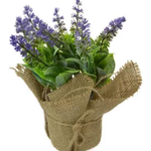 Lavender in Burlap Pot 21cm