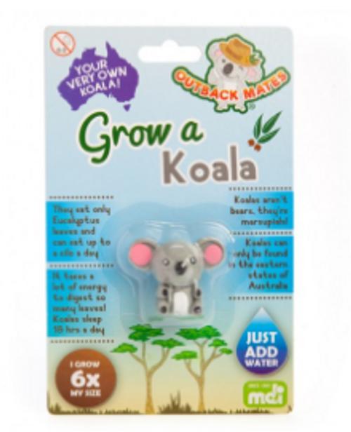 Grow Your Own Koala