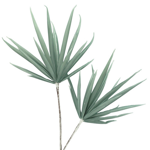 Yucca Stem Sage 100cm