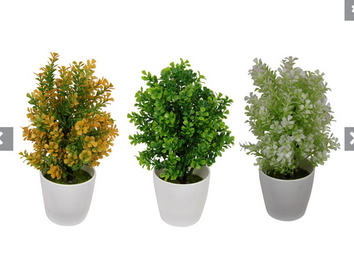 Assorted Artificial Plant in White Pot