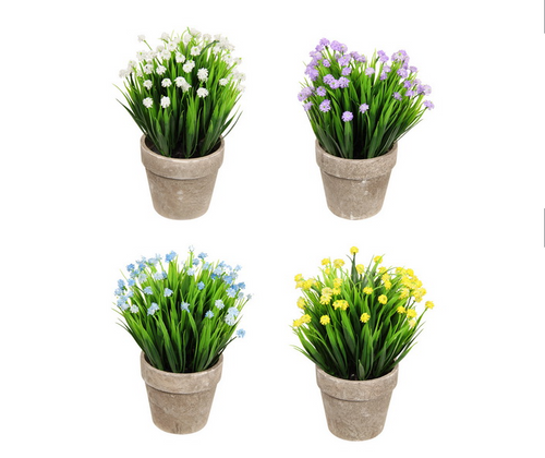 Assorted Coloured Flowers in Pot