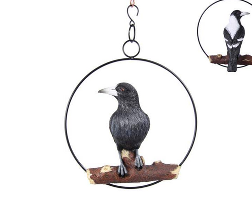 Hanging Magpie in Ring