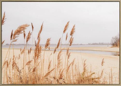 Pampas Grass Canvas