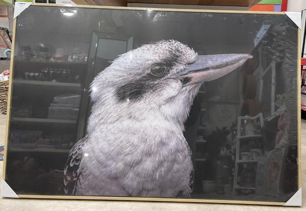 Kookaburra Canvas 80cmx120cm