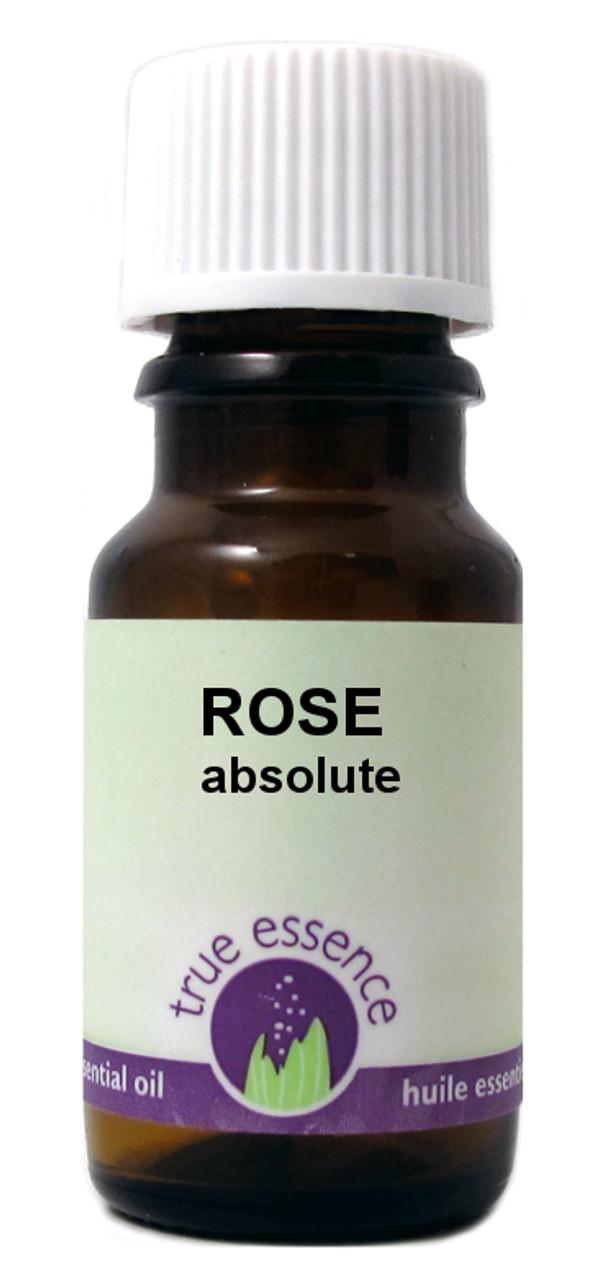 ROSE (Rosa damascena) Absolute