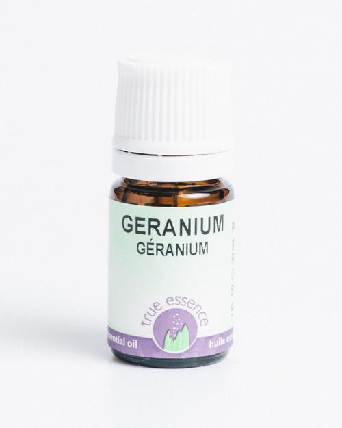 GERANIUM MADAGASCAR (Pelargonium roseum) Organic