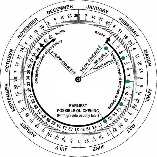 Pregnancy / Gestational / Obstetric Calculator Wheel