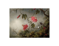 Passion Flowers and Hummingbirds   11x14 Matted Print