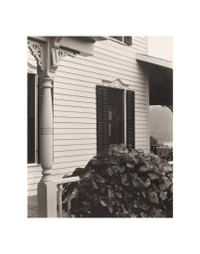 Stieglitz House and Grape Leaves 11 x 14 Matted Print