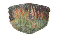 Face Mask - Claude Monet, Rounded Flower Bed