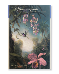 Hummingbirds:  Martin Johnson Heade Notecard Box