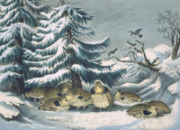 Currier and Ives Snowed Up Rugged Grouse in Winter Holiday Cards