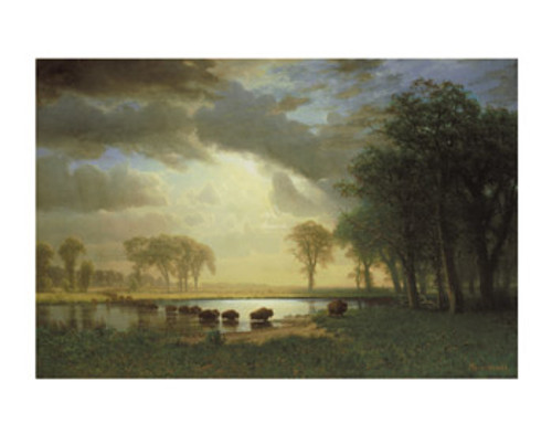 Bierstadt The Buffalo Trail 11x14  Matted Print