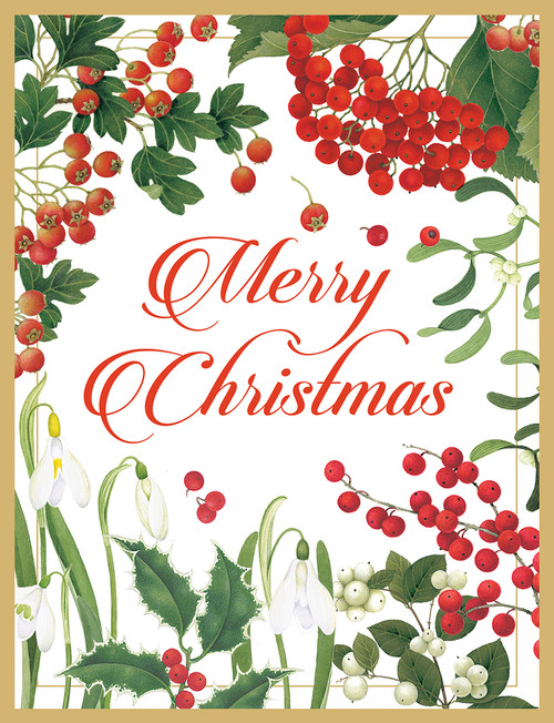 Merry Christmas and Botanicals Holiday Cards