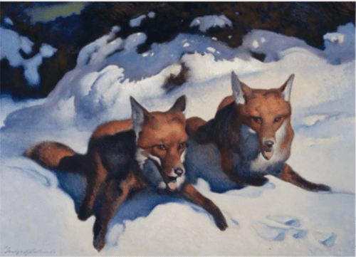 MFA Two Foxes Holiday Cards