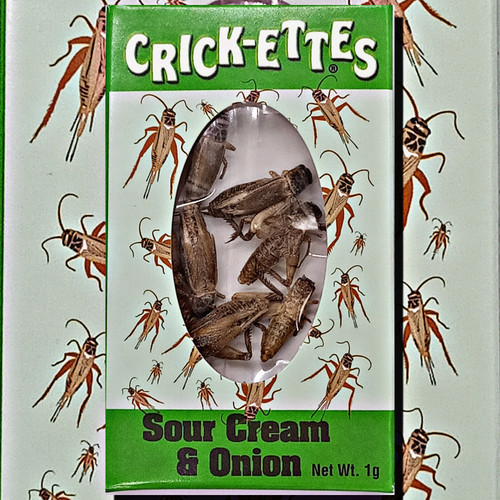 Crick-ettes Sour Cream and Onion Crickets