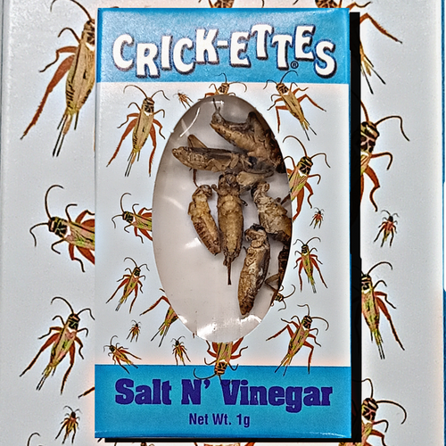 Crick-ettes Salt and Vinegar Crickets