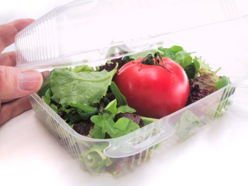 "8"" Square Plastic Hinged Deli Container - Case of 250  #CPC895"
