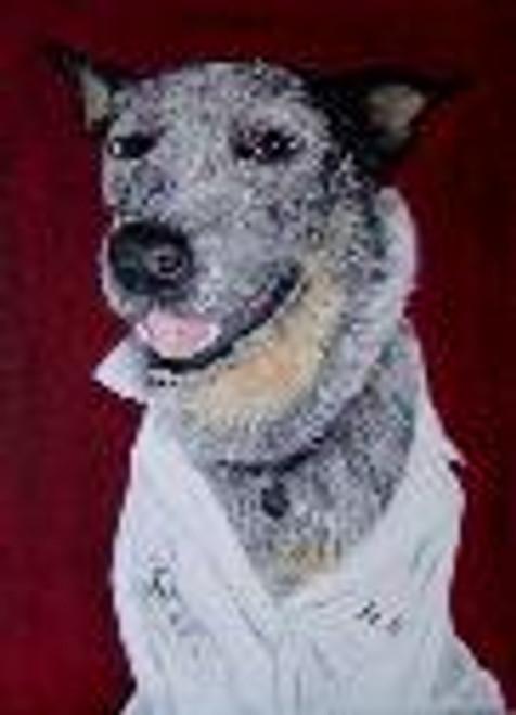 Dog Portrait Australian Blue Heeler Oil Painting
