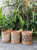 Rattan Baskets Canada Organic Eco Friendly