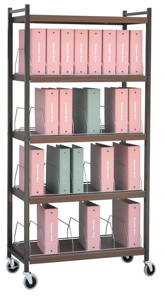 Omnimed Big Beam Vertical Chart Racks (Locking Options)