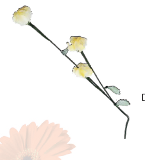 YELLOW DECORATIVE FLOWER