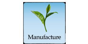 Tea Manufacturing Icon