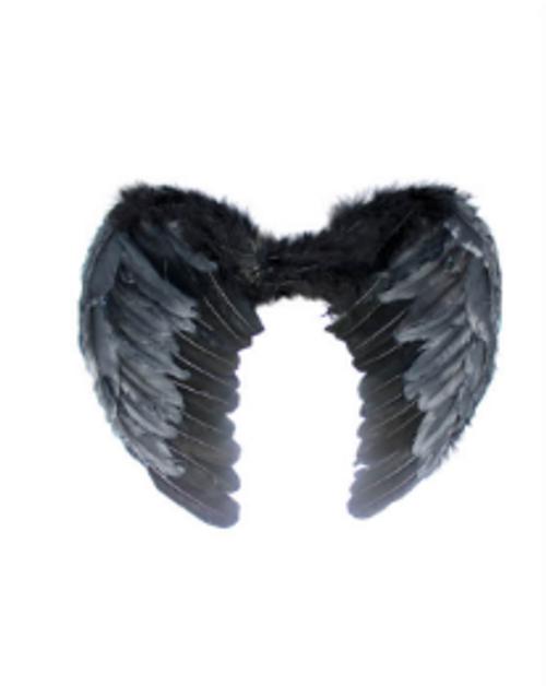 Angel Wing (Small) (Black)