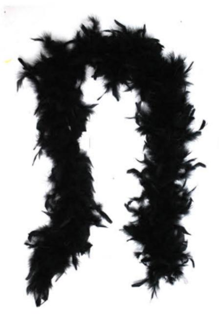 Feather Boa (Black)