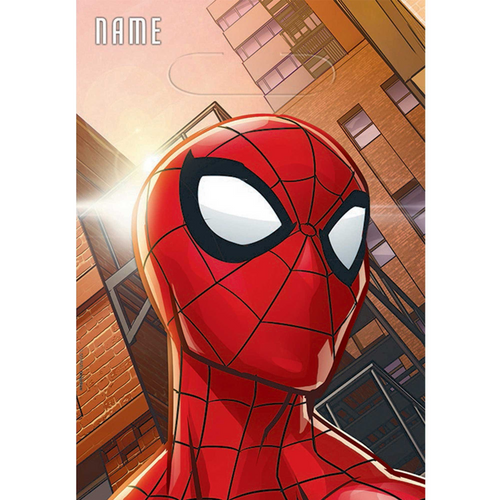 Spider-Man WW Loot Bags