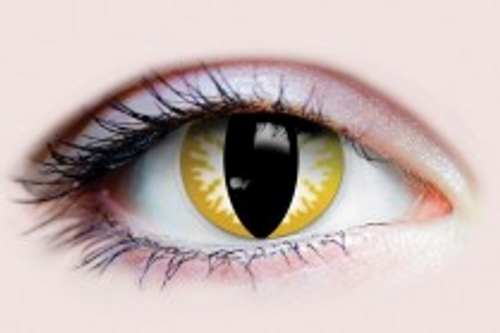 Thriller Contact Lenses