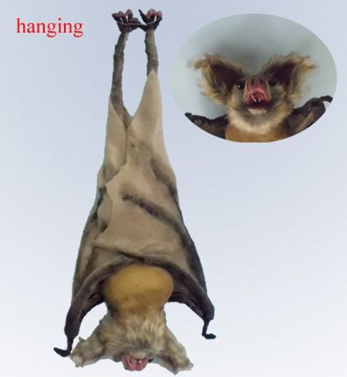 VICIOUS HANGING BROWN BAT, 48X21CMX9