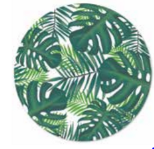 PLACEMATS 4PK TROPICAL DESIGN