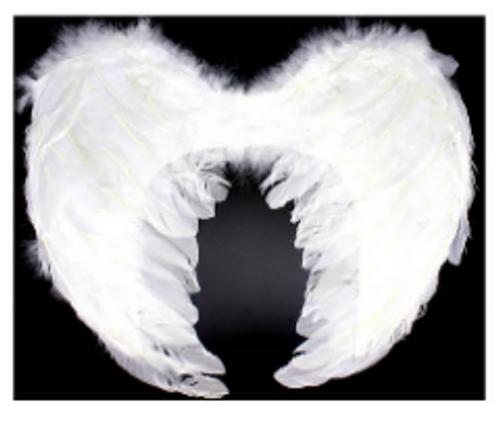 Angel Wings (Medium) (White)