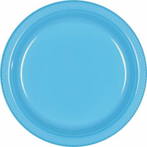 Plas Plates 22.9cm 20CT-Carib