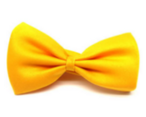 Bow Tie (Plain) S (Yellow)