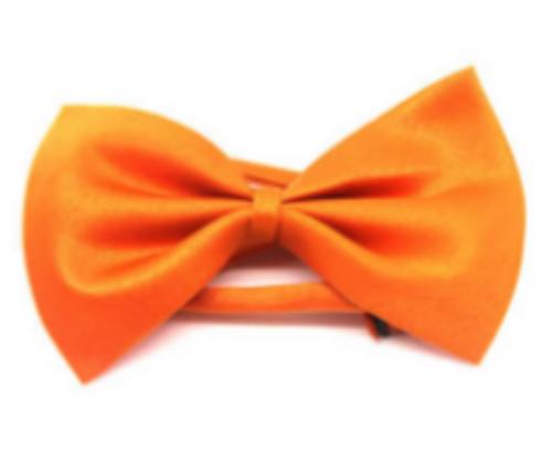 Bow Tie (Plain) S (Orange)