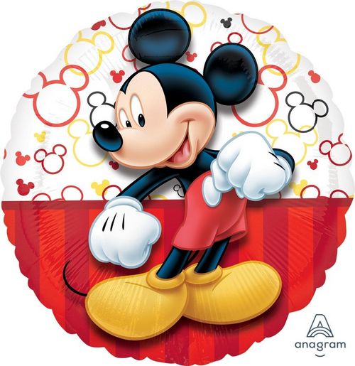 45cm STD HX Mickey Portrait S60